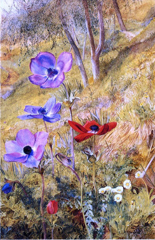 Henry Roderick Newman Anemones - Hand Painted Oil Painting