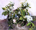 John La Farge Apple Blossoms - Hand Painted Oil Painting