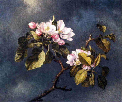 Martin Johnson Heade Apple Blossoms - Hand Painted Oil Painting