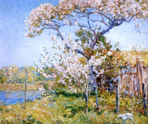 Frederick Childe Hassam Apple Trees in Bloom, Old Lyme - Hand Painted Oil Painting