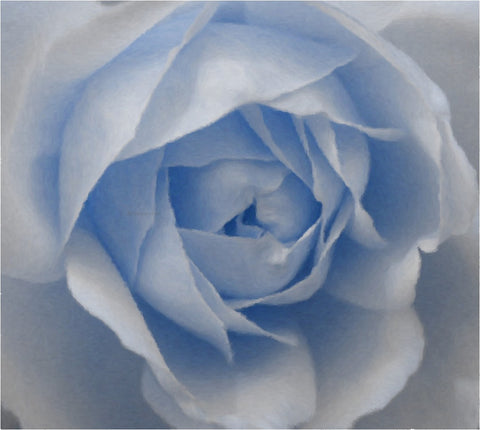 Our Original Collection Baby Blue Rose - Hand Painted Oil Painting