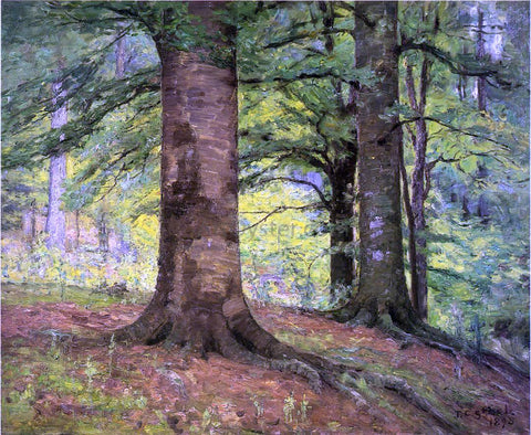Theodore Clement Steele Beech Trees - Hand Painted Oil Painting
