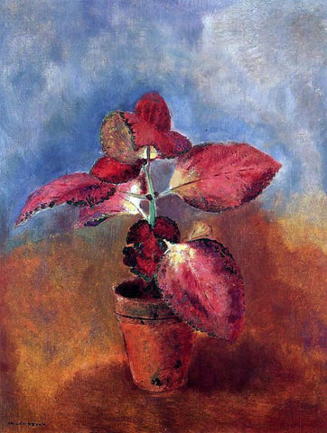 Odilon Redon Begonia in a Pot - Hand Painted Oil Painting