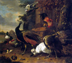 Melchior D'Hondecoeter Birds in a Park - Hand Painted Oil Painting