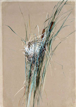 Fidelia Bridges Bird's Nest in Cattails - Hand Painted Oil Painting