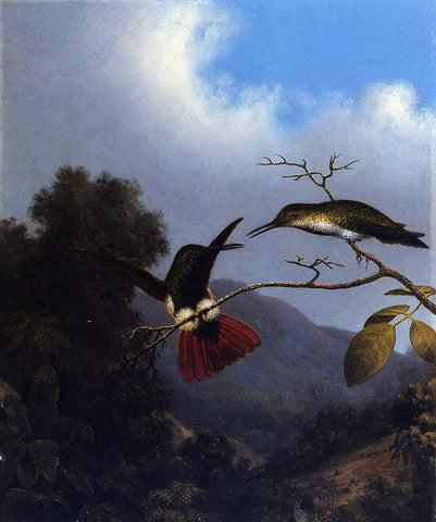Martin Johnson Heade Black-Throated Mango - Hand Painted Oil Painting