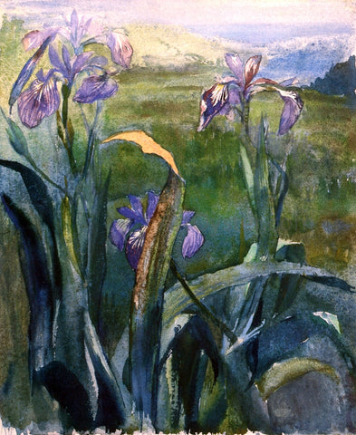 John La Farge Blue Iris, Study - Hand Painted Oil Painting