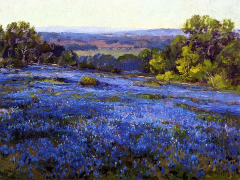 Julian Onderdonk Bluebonnets, Late Afternoon, North of San Antonio - Hand Painted Oil Painting