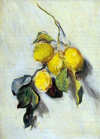 Claude Oscar Monet Branch of Lemons - Hand Painted Oil Painting