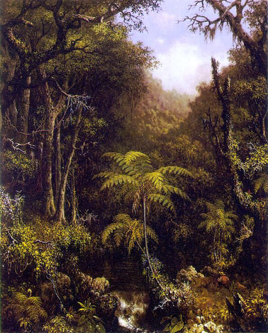 Martin Johnson Heade Brazilian Forest - Hand Painted Oil Painting