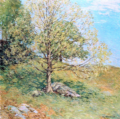 Willard Leroy Metcalf Budding Oak - Hand Painted Oil Painting