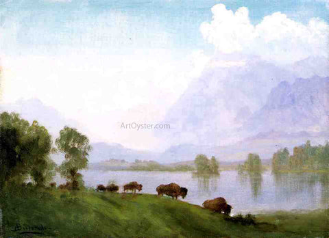 Albert Bierstadt Buffalo Country - Hand Painted Oil Painting