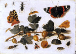 The Elder Jan Van Kessel Butterflies and Insects and a Spray of Gooseberries - Hand Painted Oil Painting