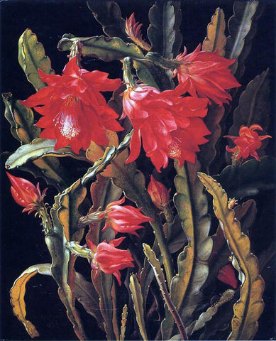 Christian Juel Mollback Cactus with Scarlet Blossoms - Hand Painted Oil Painting