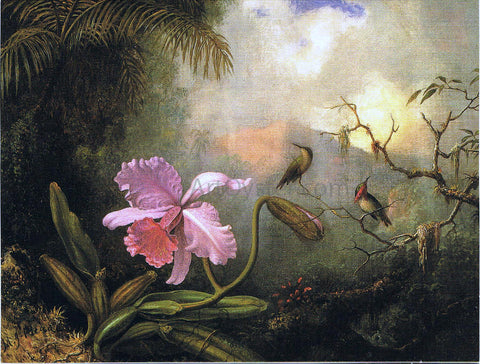 Martin Johnson Heade Carrleya Orchid with Two Hummingbirds - Hand Painted Oil Painting