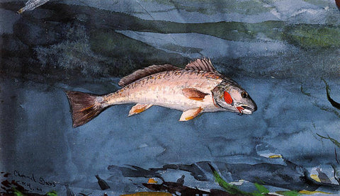 Winslow Homer Channel Bass, Florida - Hand Painted Oil Painting