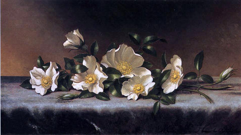 Martin Johnson Heade Cherokee Roses on a Light Gray Cloth - Hand Painted Oil Painting