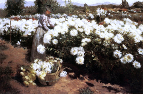 Fannie Eliza Duvall Chrysanthemum Garden in Southern California - Hand Painted Oil Painting