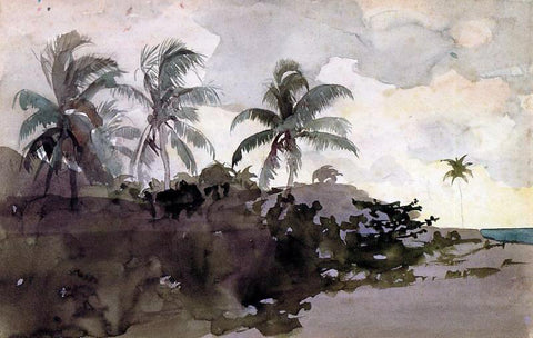 Winslow Homer Coconut Palms - Hand Painted Oil Painting
