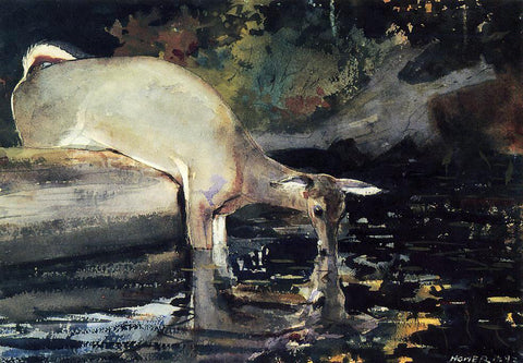 Winslow Homer A Deer Drinking - Hand Painted Oil Painting