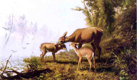 Arthur Fitzwilliam Tait Deer in the Woods - Hand Painted Oil Painting