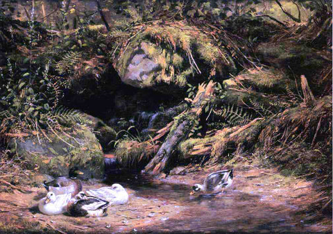 Arthur Fitzwilliam Tait Ducks at the Spring Head - Hand Painted Oil Painting