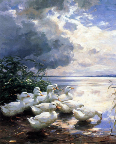 Alexander Koester Ducks in the Morning - Hand Painted Oil Painting