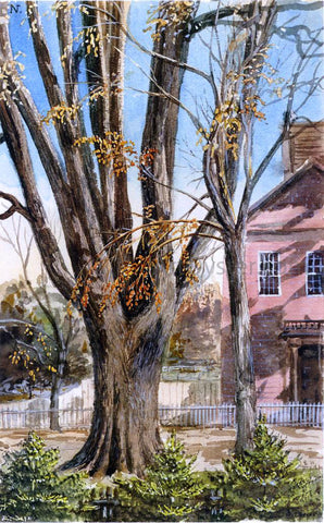Charles De Wolf Brownell Elm, East Hartford, Connecticut - Hand Painted Oil Painting