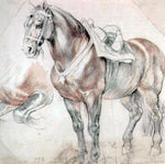 Peter Paul Rubens Etude of horse - Hand Painted Oil Painting
