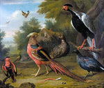 Charles Collins Exotic Pheasants and Other Birds - Hand Painted Oil Painting