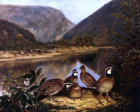 II Titian Ramsey Peale Five Bobwhites at the Delaware Water Gap - Hand Painted Oil Painting