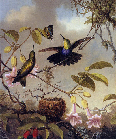 Martin Johnson Heade Fort-Tailed Woodnymph - Hand Painted Oil Painting