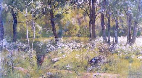 Ivan Ivanovich Shishkin Grassy glades of the forest (etude) - Hand Painted Oil Painting