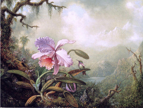 Martin Johnson Heade Heliodore's Woodstar and a Pink Orchid - Hand Painted Oil Painting