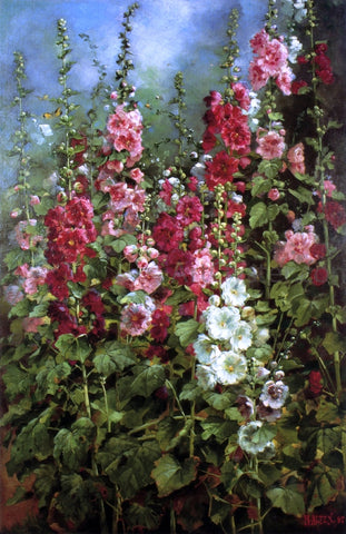 Mathias J Alten Hollyhocks - Hand Painted Oil Painting