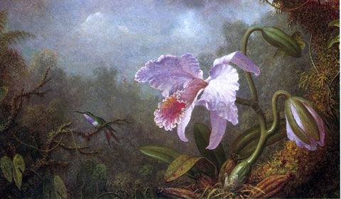 Martin Johnson Heade Hummingbird and Orchid - Hand Painted Oil Painting