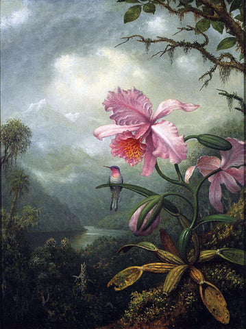 Martin Johnson Heade Hummingbird Perched on an Orchid Plant - Hand Painted Oil Painting