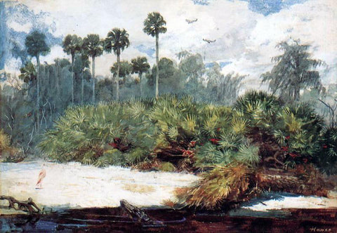 Winslow Homer In a Florida Jungle - Hand Painted Oil Painting