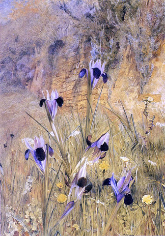 Henry Roderick Newman Irises in the Garden - Hand Painted Oil Painting
