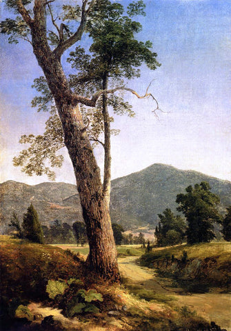 Asher Brown Durand Mountain Vista - Hand Painted Oil Painting