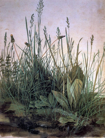 Albrecht Durer Large Turf - Hand Painted Oil Painting
