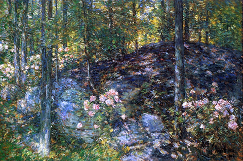 Frederick Childe Hassam Laurel on the Ledges - Hand Painted Oil Painting
