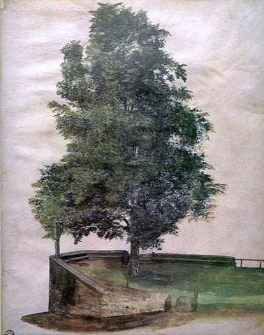 Albrecht Durer Linden Tree on a Bastion - Hand Painted Oil Painting