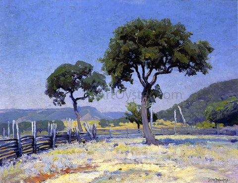 Julian Onderdonk Live Oak Trees On Williams' Ranch, Bandera County - Hand Painted Oil Painting