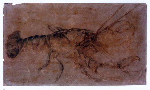 Albrecht Durer Lobster - Hand Painted Oil Painting