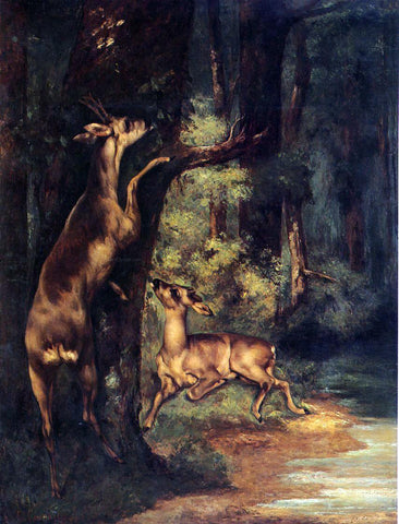 Gustave Courbet Male and Female Deer in the Woods - Hand Painted Oil Painting