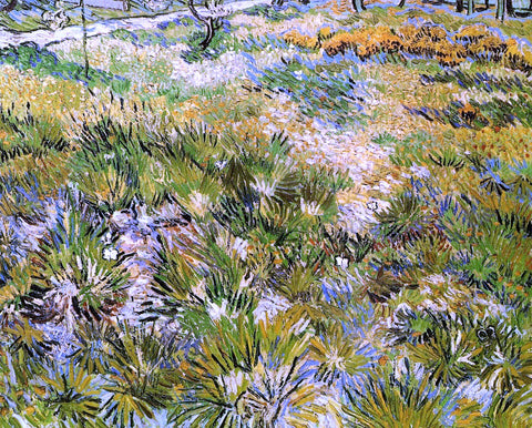 Vincent Van Gogh Meadow in the Garden of Saint-Paul Hospital - Hand Painted Oil Painting