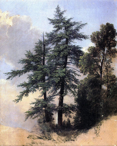 Asher Brown Durand Nature Study, Trees, Newburth, N.Y. - Hand Painted Oil Painting