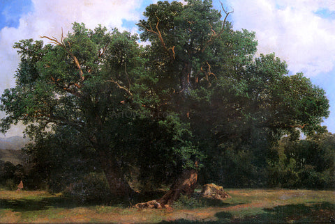 Johannes Bosboom Oak Trees - Hand Painted Oil Painting