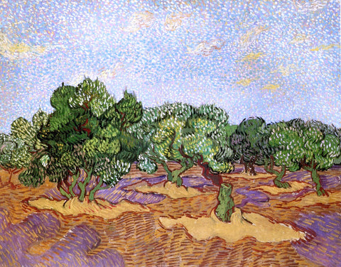Vincent Van Gogh Olive Grove: Pale Blue Sky - Hand Painted Oil Painting